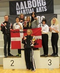 Haderslev kickboxing.Danish open 2013